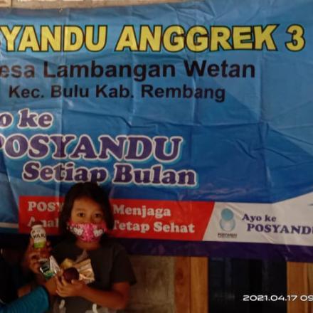 Pelaksanaan Posyandu Anggrek 3